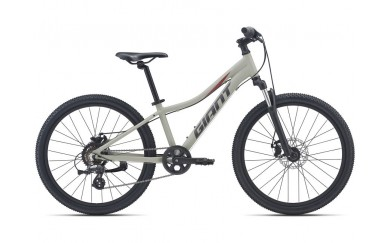 Велосипед GIANT XtC Jr Disc 24 2021