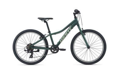 Велосипед GIANT XtC Jr 24 Lite 2021