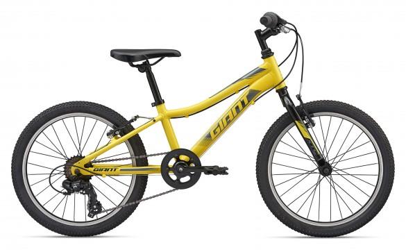 Детский велосипед Giant XTC Jr 20 Lite 2020